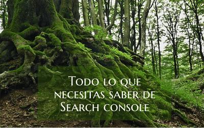 Todo lo que necesitas saber de Search Console como escritor