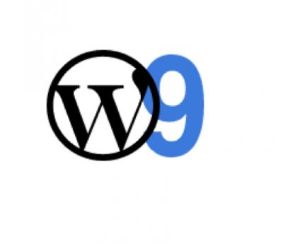 Clase nº 9 de wordpress